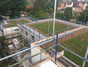 Green roofs at the new Fairfield care home